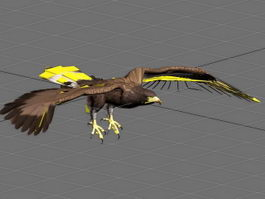 Flying Eagle Animation 3d model