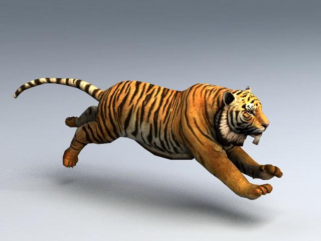 Animated Tiger Rig 3d model rendered image