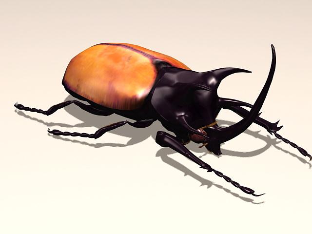 Rhinoceros Beetle 3d model rendered image