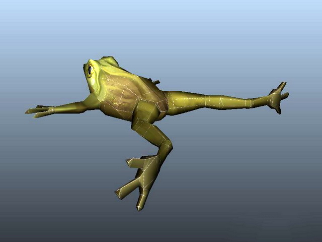Green Frog 3d model rendered image