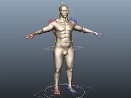 Muscle Man Rig 3d model