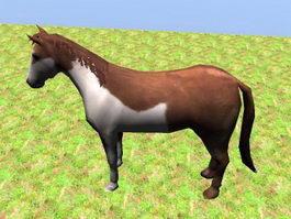 Pinto Horse Rig 3d model