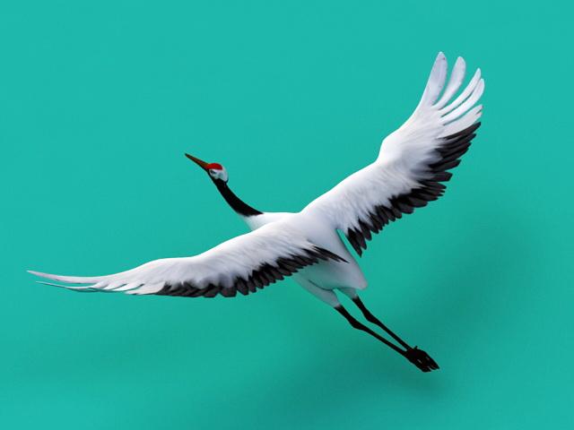 Crane Animal Animation 3d model rendered image