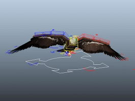 Eagle Animation Rig 3d model