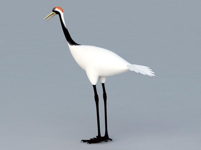 Chinese Crane Bird 3d model rendered image