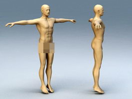 Adult Man Body 3d model