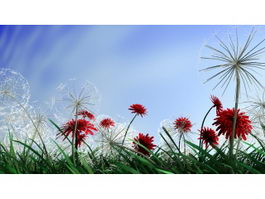 Dandelion Plant Flowers 3d model