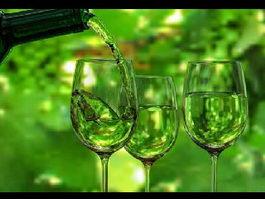 Wine Scene 3d model