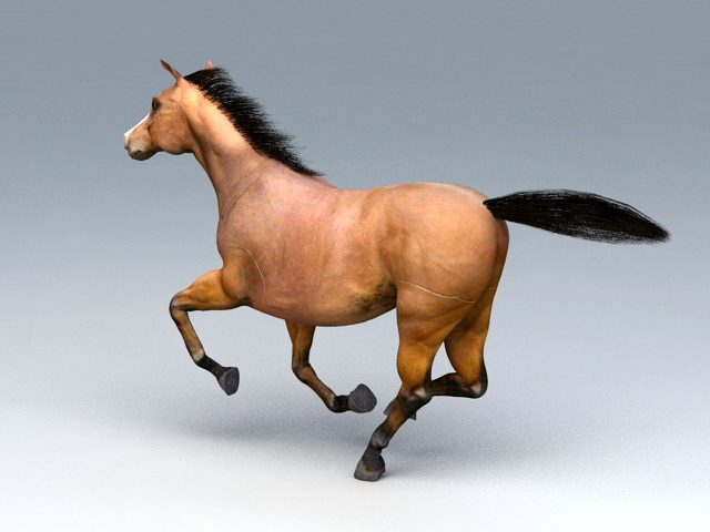 Beautiful Running Horse 3d Model 3ds Max Files Free Download Modeling 45528 On Cadnav