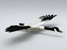 Fly Swan 3d model