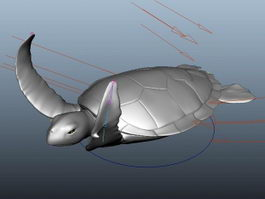 Sea Turtle Rig 3d model