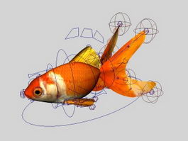 Animated Goldfish Rig 3d model