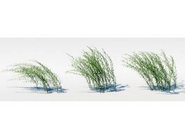 Unnamed Grass 3d model