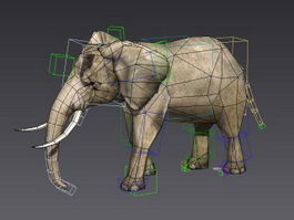 Elephant Running Animated & Rig 3d model