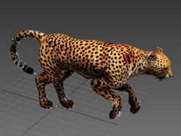 Cheetah Running Animated & Rig 3d model