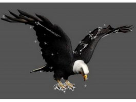 Eagle Attacking Rig 3d model