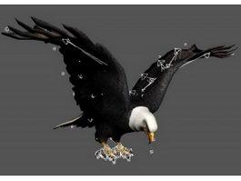 Eagle Attacking Rig 3d model