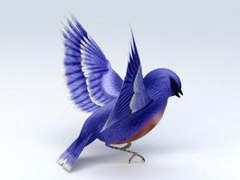Blue Hummingbird 3d model