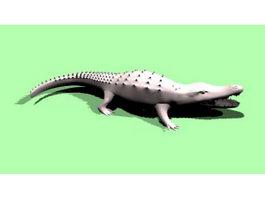 American Crocodile 3d model