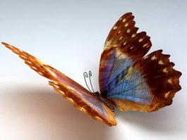 Orange Butterfly 3d model