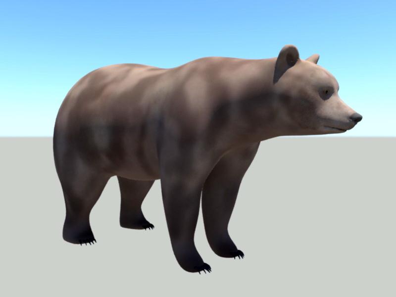 Brown Bear Rig 3d model Maya files free download - modeling 46169 on