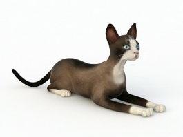 Snowshoe Cat 3d preview
