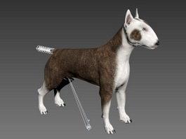 Bull Terrier Dog Rig 3d model
