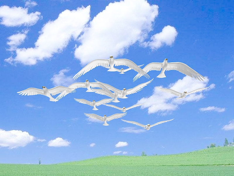 Flying Dove Animation 3d model 3ds Max files free download