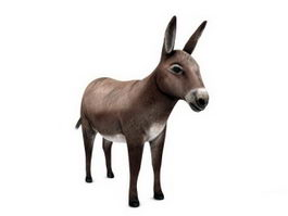 Domestic Donkey 3d model