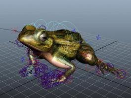 Mink Frog Rig 3d model