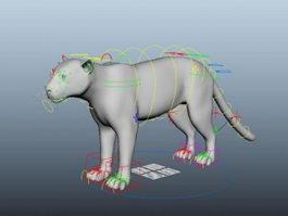 African Leopard Rig 3d model