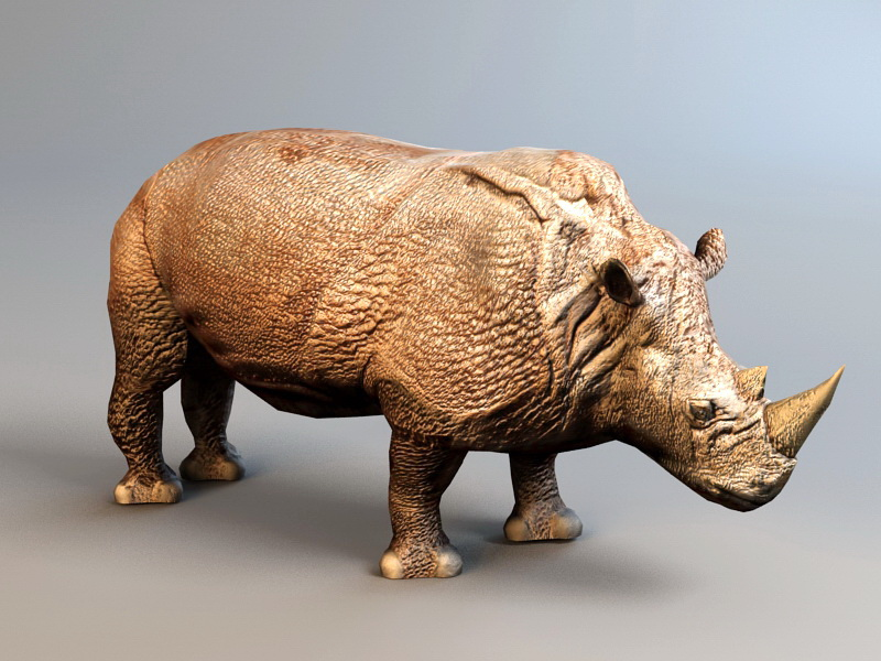 Rhino Attack Animation 3D Model