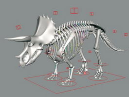 Triceratops Skeleton Rig 3d model
