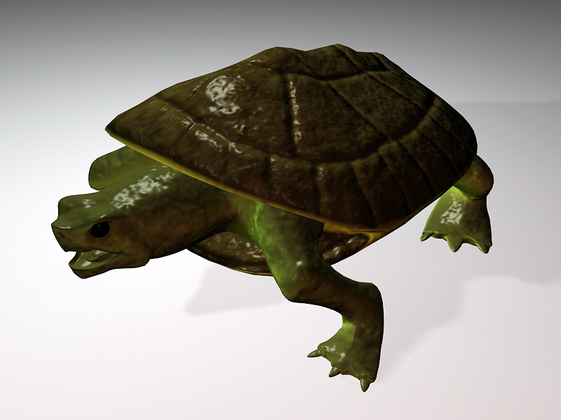 Turtle Figurine 3d Model 3ds Max Files Free Download