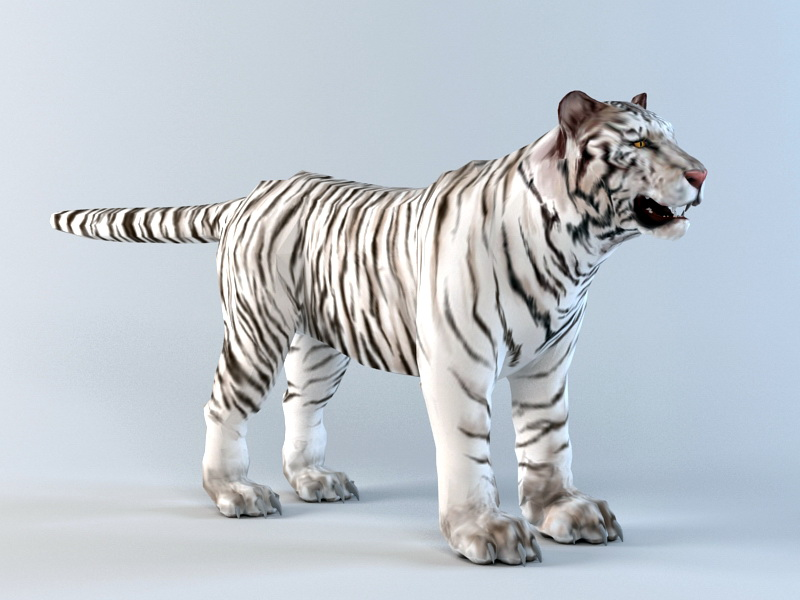 White Tiger 3d Model 3ds Max Files Free Download