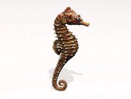 Brown Seahorse 3d model