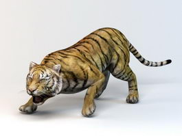 Sumatran Tiger 3d preview