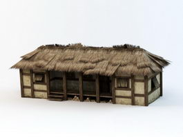 Thatched Folk House 3d model
