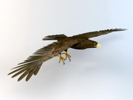 Flying Eagle Animated 3d model