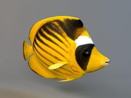 Raccoon Butterflyfish 3d model