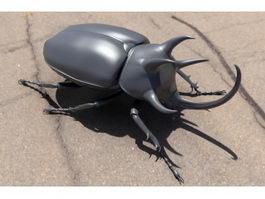 Three Horned Rhinoceros Beetle 3d model