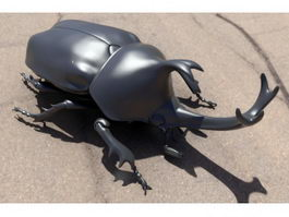Japanese Rhinoceros Beetle 3d model
