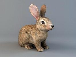 Brown Rabbit 3d model