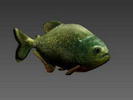 Piranha Fish Animated Rig 3d model