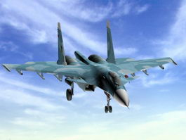 Su-33 Fighter Aircraft 3d model
