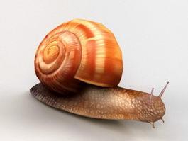 Orange Snail 3d model