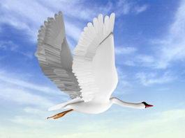 White Swan 3d model