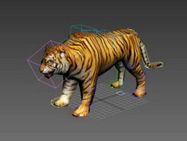 Tiger Rigged 3d model