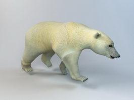 White Bear 3d model