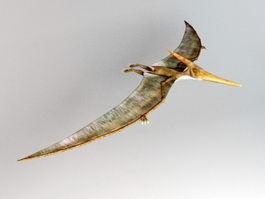 Pteranodon Rig 3d preview